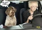 E22.-Humour-Conduire-Avec-Mamie.jpg