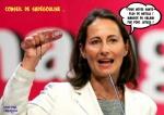 H26.-Politique-Miss-Nutella-Sadegouline-Fakes.jpg