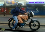 F25.-Humour-Moto-Sexy.jpg