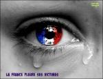 K9.-Politique-La-France-Pleure.jpg