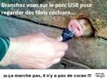 J13.-Humour-Porc-USB-.jpg