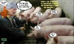 M11.-Politique-La-Foll-et-Les-Eleveurs-de-Porcs-.jpg