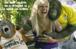 K3.-Humour-Les-Bêtes-La-Blonde-.jpg