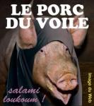 L11.-Humour-le-porc-Copie.jpg