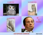 O14.-Politique-Le-Trouduc-.jpg