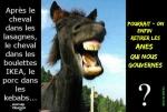 N21.-Humour-Les-Anes-Le-Gouvernement-Copie.jpg