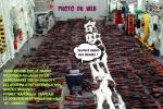 Q28.-Politique-Arsenal-Saisie-Pour-Gentils-Migrants.jpg