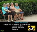 O24.-Humour-Voisines-Vigilantes-.jpg