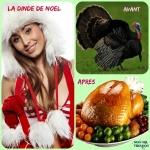 Q15.-Humour-Les-Dindes-de-Noel.jpg