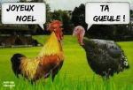 Q8.-Humour-La-Dinde-Noël-.png
