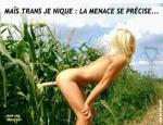 S18.-Humour-Maîs-Trans-Je-Nique-Danger.jpg