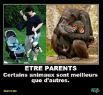S22.-Humour-Les-Parents.jpg