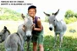 V8.-Politique-Hollande-Les-Siens-Copie-Copie.jpg