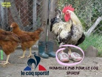 T10.-Humour-Le-Coq-Sportif-Pub.jpg