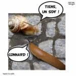 T23.-Humour-SDF.jpg