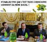 W8.-Politique-Le-Bocal-De-Cornichons-.jpg