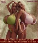 T29.-Humour-Les-Blondes.jpg
