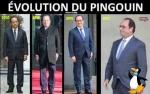 W30.-Politique-Evolution-Du-Pingouin-.jpg