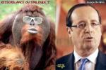 Y7.-Politique-Ressemblance-ou-Similitude-.jpg