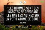 AD5.-Politique-Citation-Voltaire-.jpg