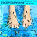 AD19.-Humour-Apres-Une-Fish-Pedicure-Elle-Perd-Ses-Ongles-de-Pied.jpg
