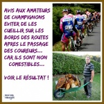 AF7.-Humour-Cueillette-De-Champignons-Attention-.jpg
