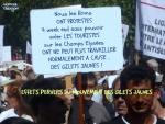 AH15.-Politique-Manifestation-de-Roms-Contre-Les-Gilets-Jaunes.jpg
