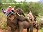 AH21.-Humour-Safari-Télescopage.jpg
