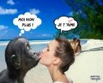 AI17.-Humour-Je-Taime.jpg