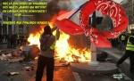 AI7.-Politique-Bravo-Aux-Foulards-Rouge-.jpg