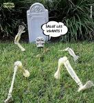 AJ2.-Humour-Halloweenn-Squelette.jpg