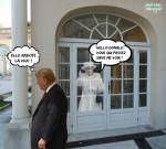 AK25.-Politique-Hello-Donald-.jpg