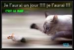 B14.-Humour-Maaf-Je-LAurais-un-Jour-Je-LAurais-.jpg