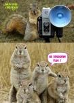 C8.-Humour-Photo-de-Famille.jpg